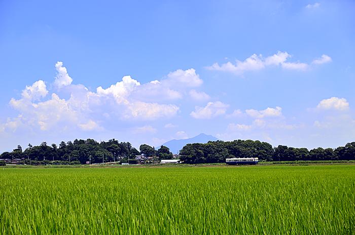 daihounatuzora