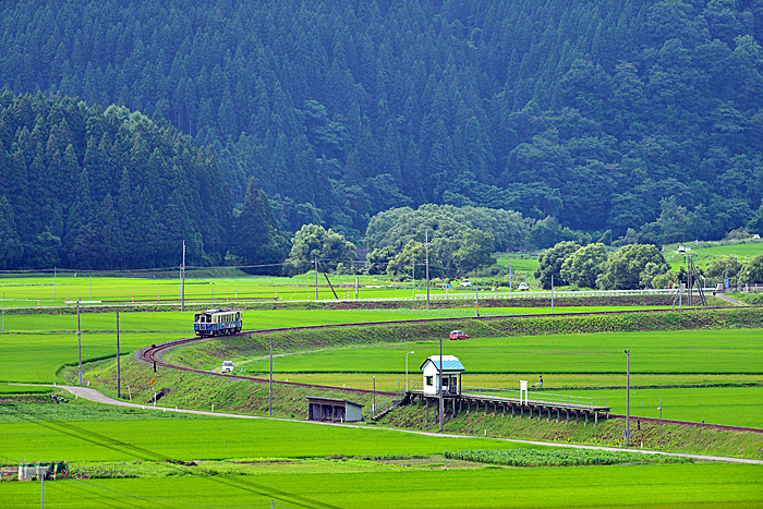 yosizawaka-bu