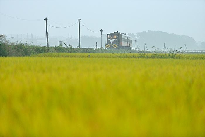 kawakuraame