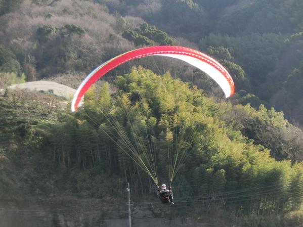 new glider