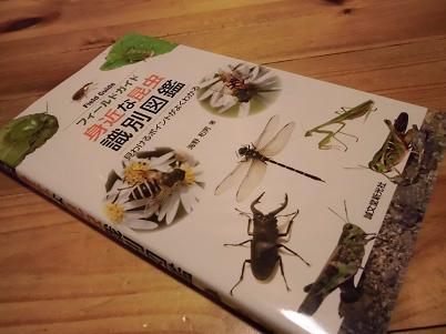 昆虫識別図鑑