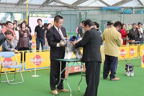 okayama2_20121023174709.jpg