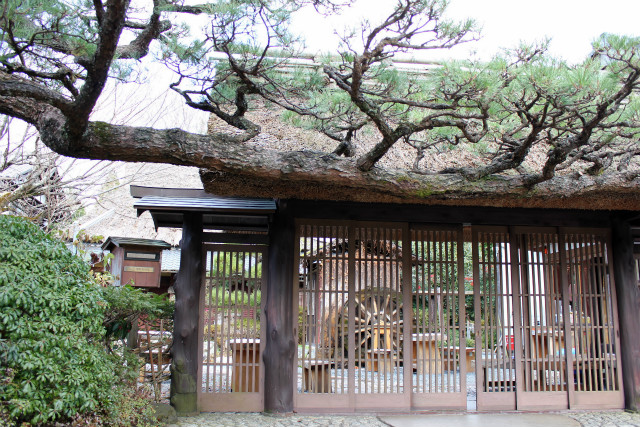 kyoto12_0040.jpg