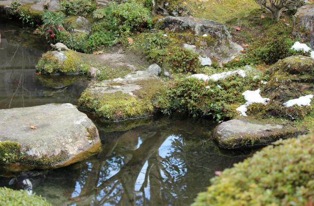 kyoto12_0269.jpg