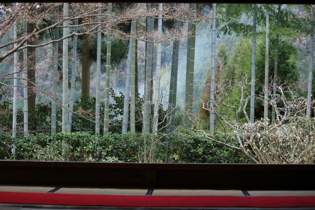 kyoto12_0276.jpg