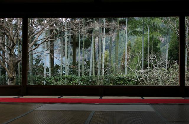 kyoto12_0289.jpg