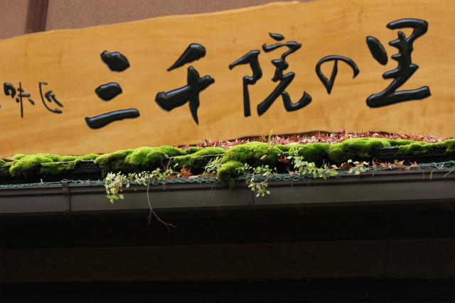 kyoto12_0520.jpg