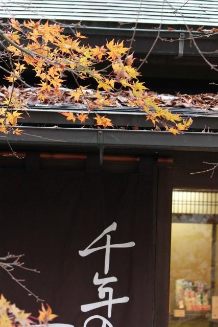 kyoto12_0527.jpg