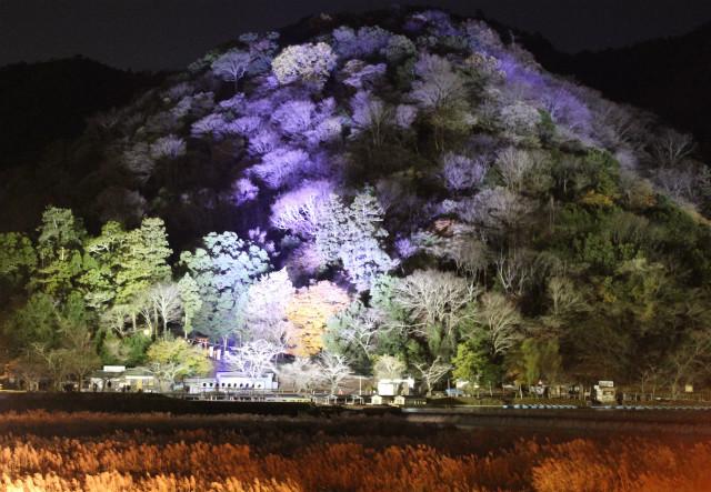 kyoto12_0610.jpg