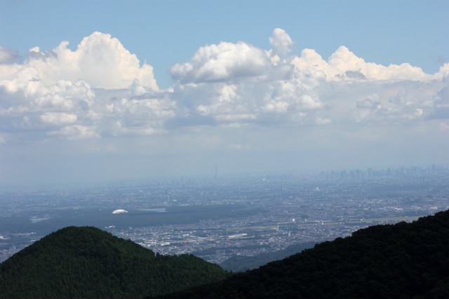 miyake_j_1398.jpg