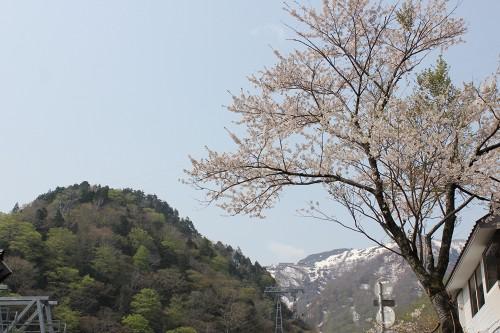 tanigawa5_041.jpg