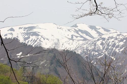 tanigawa5_486.jpg