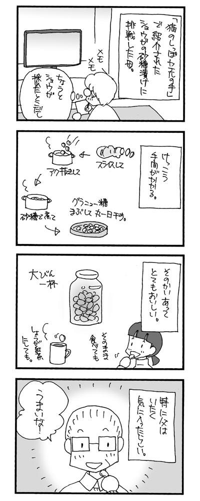 ショウガの砂糖漬け1