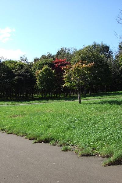 前田森林公園2
