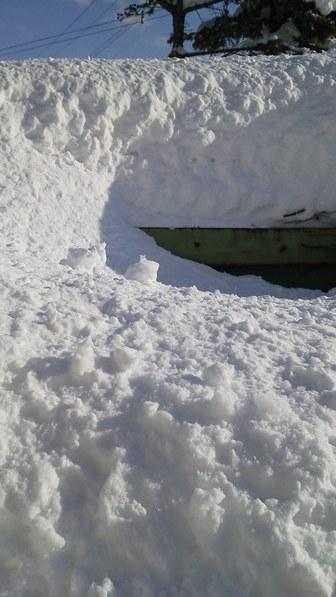 物置の雪 二月末