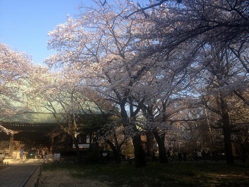 kuhonbutsu201204-1.jpg
