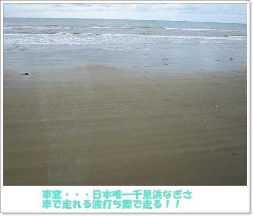 IMG_6956a.jpg