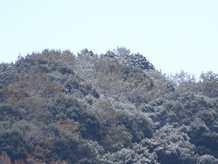 20141206 ズームイン