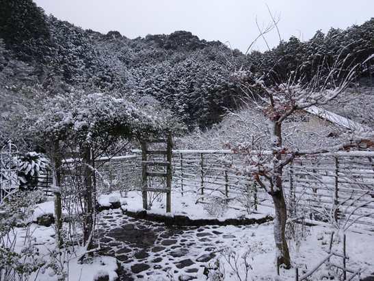 20141217 雪景色①