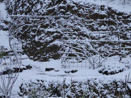 20141217 雪景色②