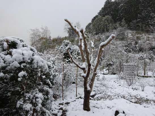 20141217 雪景色③