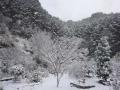 20141217 雪景色⑤