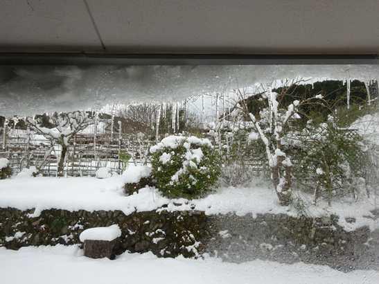 20141218 2日目の雪の朝