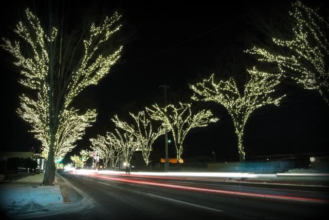 秋田県 大館市 シャイニングストリート