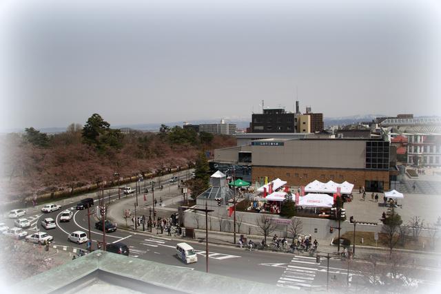 弘前公園 桜 2012年 弘前公園