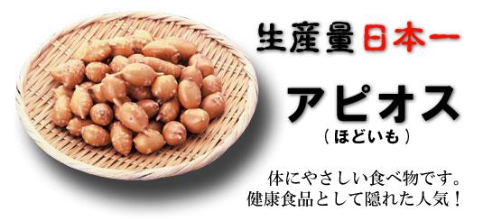 logo_apiosu01.jpg