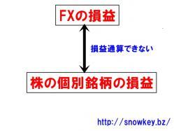 FXと株損益通算