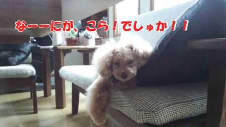 生意気なそら (2)(3)