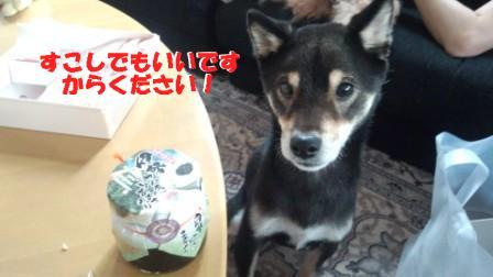 ください (4)(2)