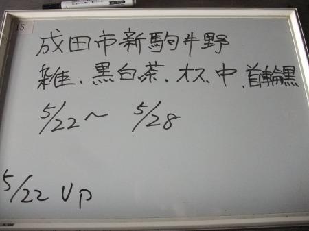 2012_0523_24.jpg