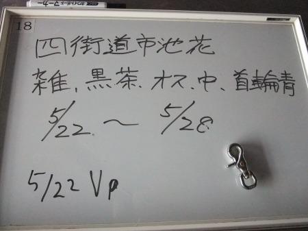 2012_0523_26.jpg