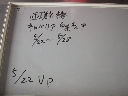 2012_0523_28.jpg