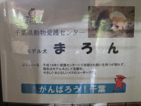 2012_0523_44.jpg