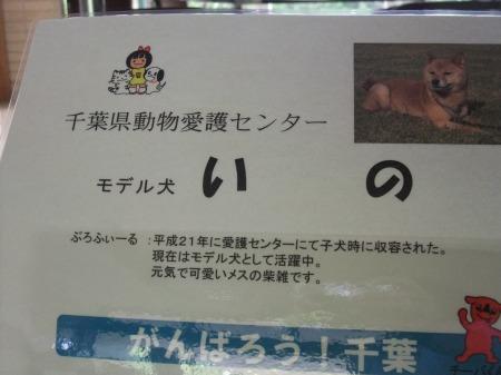 2012_0523_46.jpg