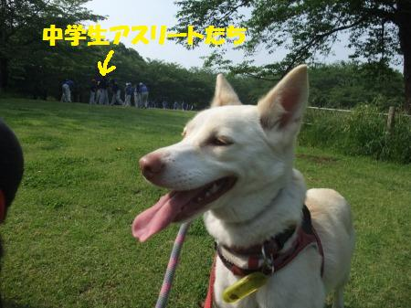 2012_0602_12.jpg