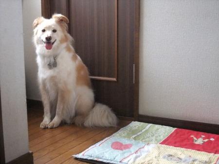 2012_0609_2.jpg