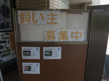 2012_0628_12.jpg