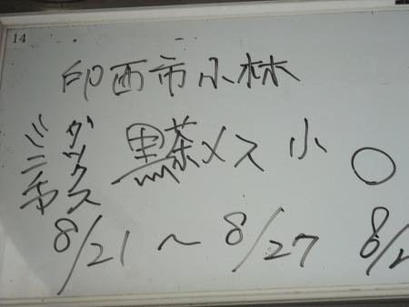 2012_0823_20.jpg