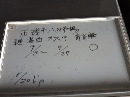 2012_0926_14.jpg