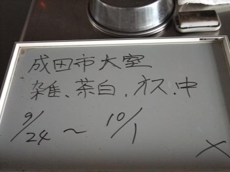 2012_0926_32.jpg