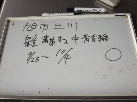 2012_0926_44.jpg