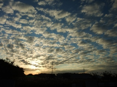 2012_1020_2.jpg