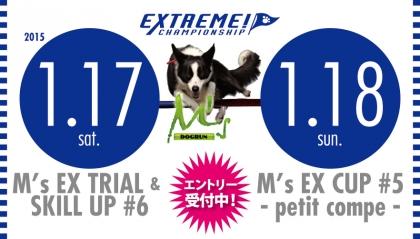 MsEX150117.jpg