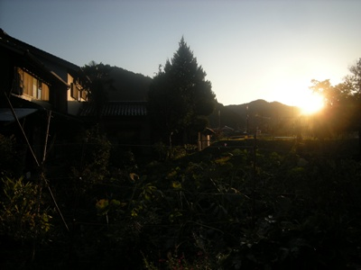 1-6higasuzumu.jpg