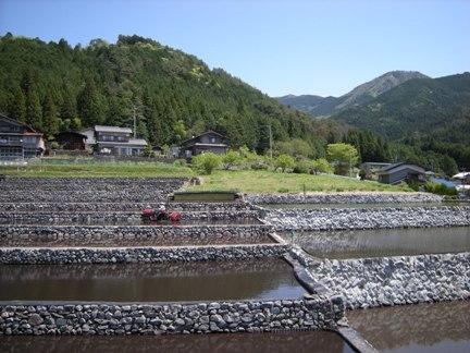 3-6棚田と湯ヶ峰