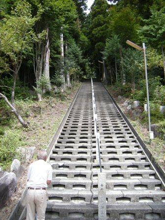 5-6石段
